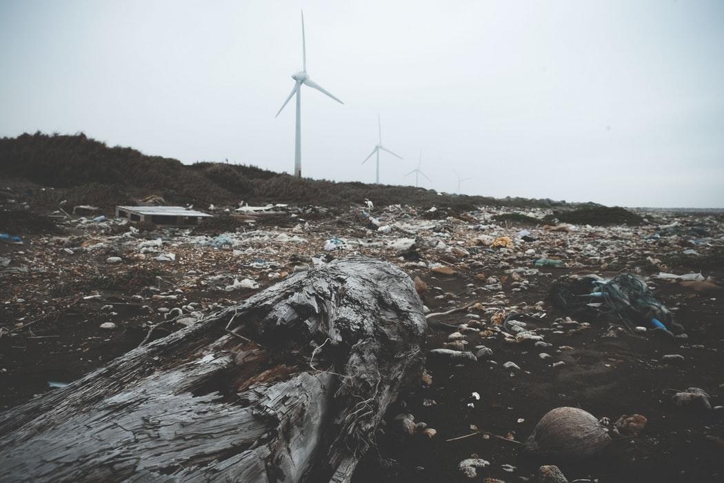 Влияние мусора на экологию